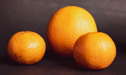 Den Orangeparcours