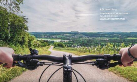 Un long été pour les amateurs de vélo