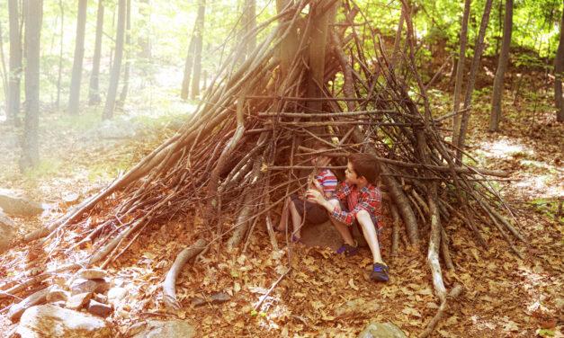 Construis ta propre cabane au Ellergronn